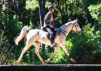 Brook-Sample-riding-Brookleigh-Dylan-(credit-Sarah-Sullivan-Photography)-web