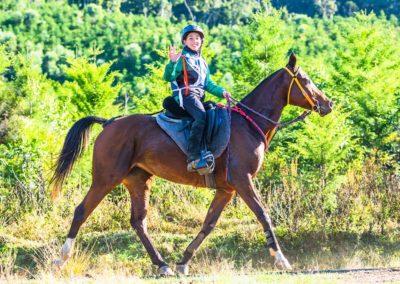 Noah-Hoogland-riding-Magic-Glenn-Glamour-Girl-(credit-Sarah-Sullivan-Photography)-web