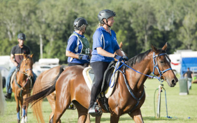 Endurance riders crank up the horse power in Imbil