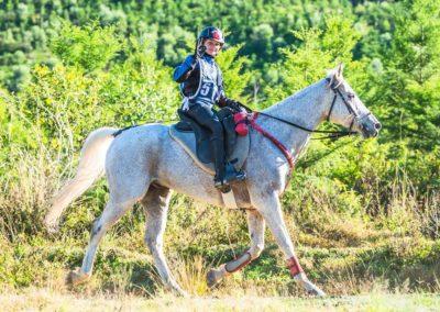 Zac-Sample-riding-Brookleigh-Milo-(credit-Sarah-Sullivan-Photography)-web
